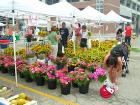 Last stop at the farmers' market is for fresh flowers.