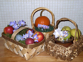 baskets_of_crocus.jpg